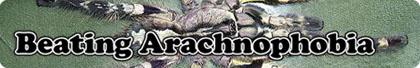 header_arachnophoboa